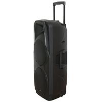 BOXA PORTABILA ACTIVA 2X10 inch/25CM 300W RMS USB/SD/BT/VHF